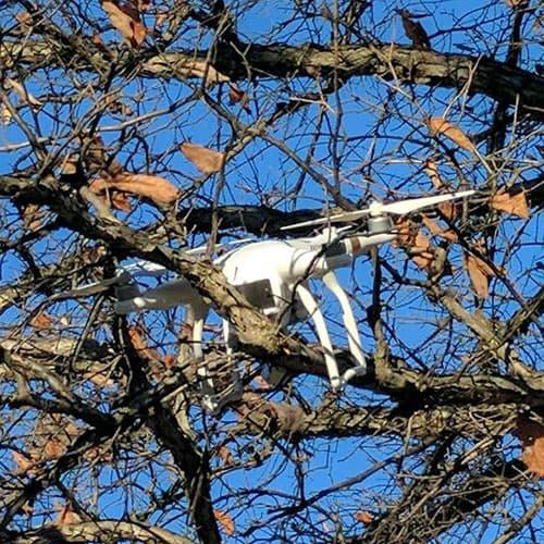 Drone die vast zit in een boom